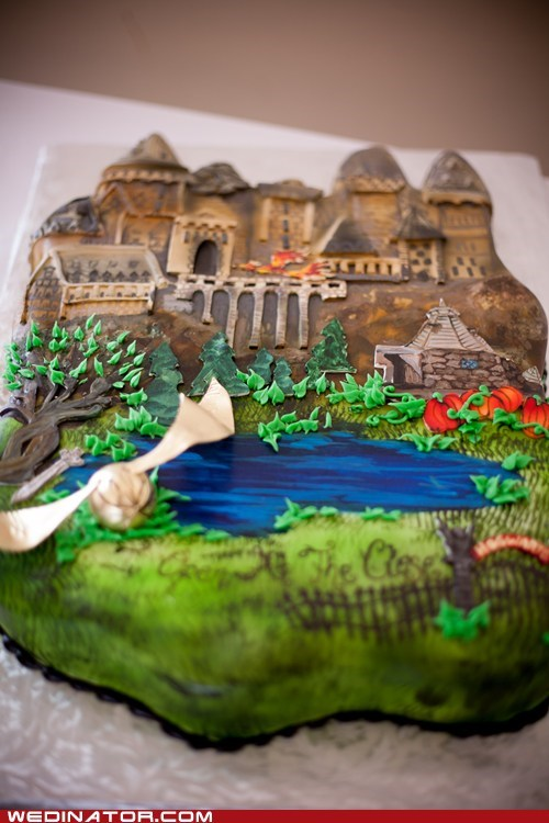 cake,fondant,grooms-cake,Harry Potter,just pretty