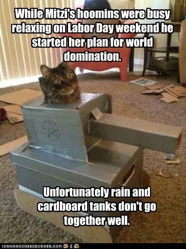 Mitzi plots world domination