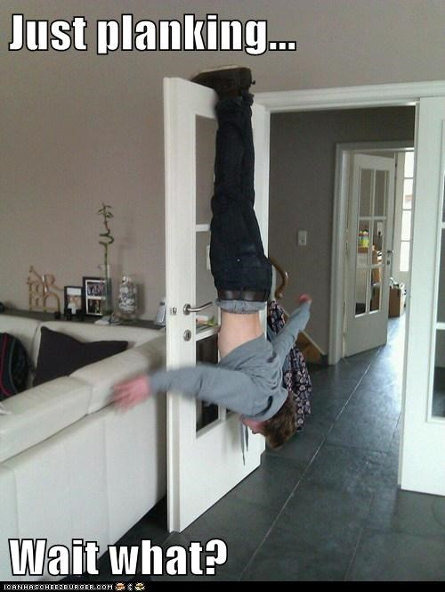 Just planking...  Wait what?