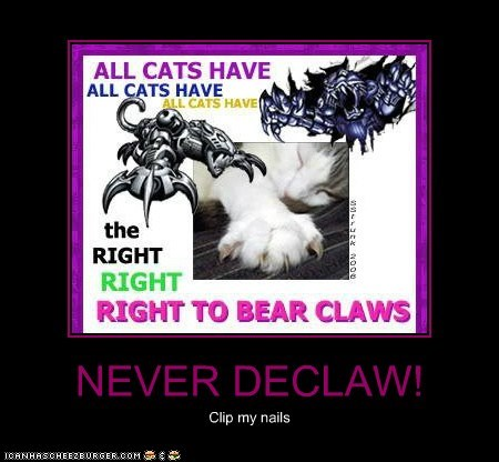 NEVER DECLAW!