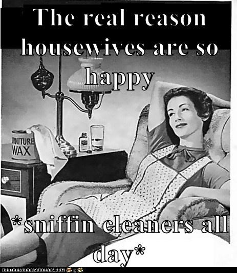 The real reason housewives are so happy  *sniffin cleaners all day*