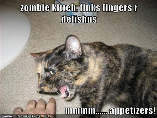 zombie kitteh, finks fingers r delishus  mmmm...... appetizers!