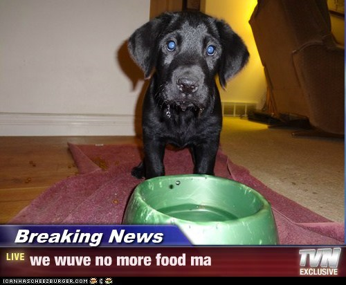 Breaking News - we wuve no more food ma