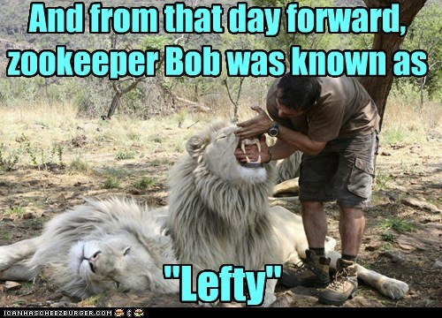 biting,bob,captions,dangerous,hands,lefty,lion,new name,teeth,zookeeper