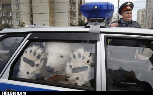 animal suit,arrest,cop,mascot,polar bear