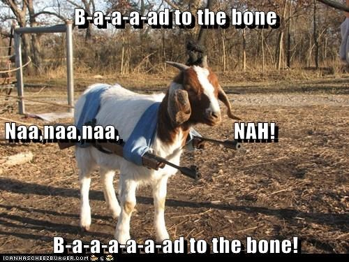 B-a-a-a-ad to the bone Naa,naa,naa,                           NAH! B-a-a-a-a-a-ad to the bone!
