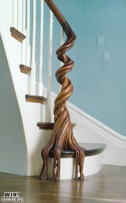 Banister,best of week,design,Hall of Fame,rail,root,stairs