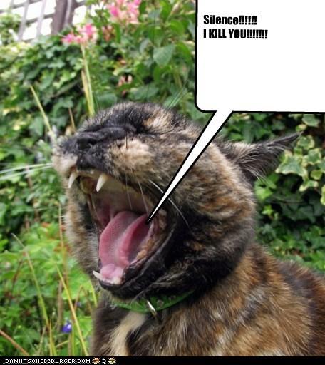 Silence!!!!!! I KILL YOU!!!!!!!