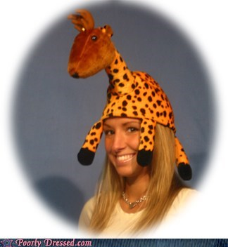 deer,giraffes,hat