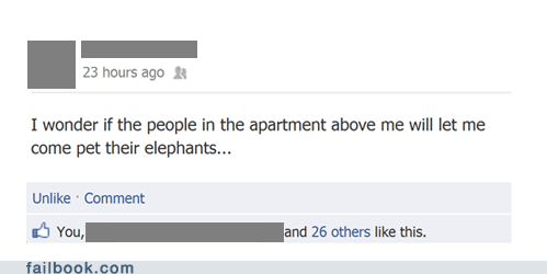 Failbook: Also, I Wasn't Aware Elephants Were Nocturnal