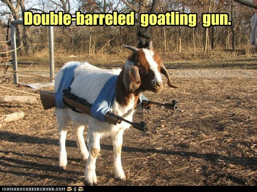 captions,double barreled,gatling gun,goat,guard,pun,threatening,weapon