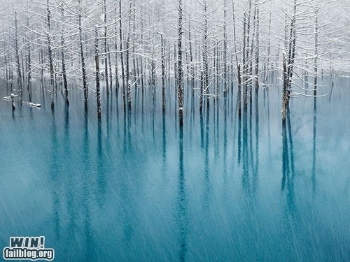 WINcation at Blue Pond, Hokkaido, Japan