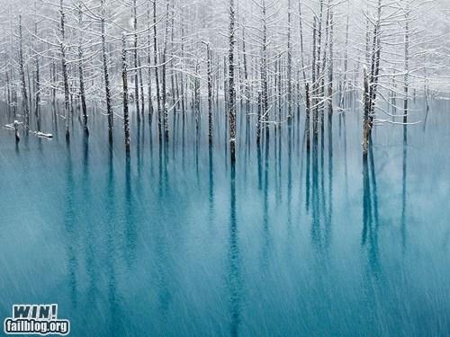 WINcation at Blue Pond, Hokkaido, Japan