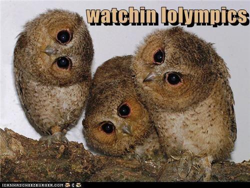 watchin lolympics