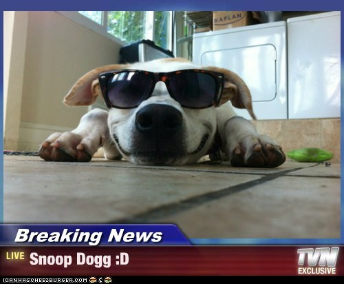 Breaking News - Snoop Dogg :D