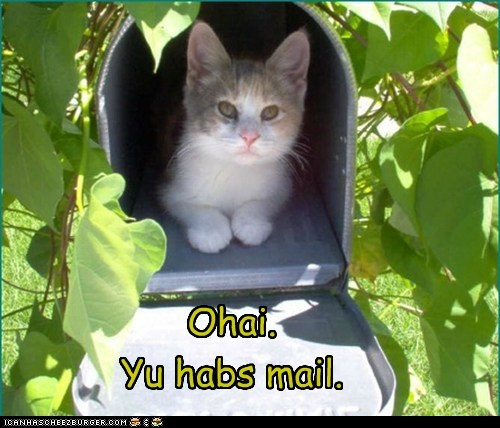 Ohai.  Yu habs mail.