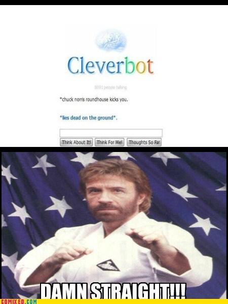 chuck norris joke,Cleverbot,roundhouse kick