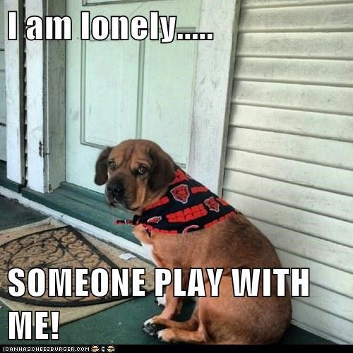 I am lonely.....  SOMEONE PLAY WITH ME!