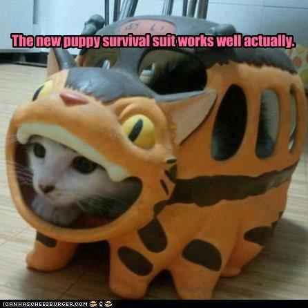 captions,catbus,Cats,dogs,survival,survival suit,totoro