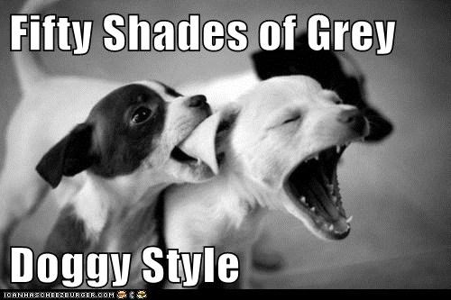 Fifty Shades of Grey  Doggy Style
