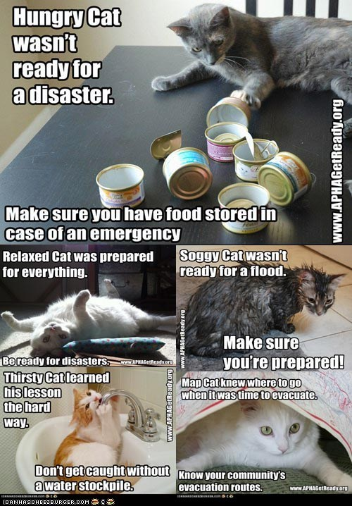 APHA,Cats,contests,disasters,messages,National Preparedness Mon,preparedness