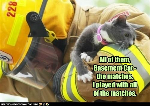 All of them, Basement Cat - the matches,  I played with all of the matches.
