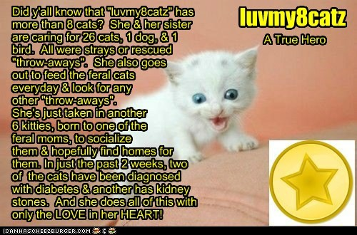 GOLD STAR FOR LUVMY8CATZ!