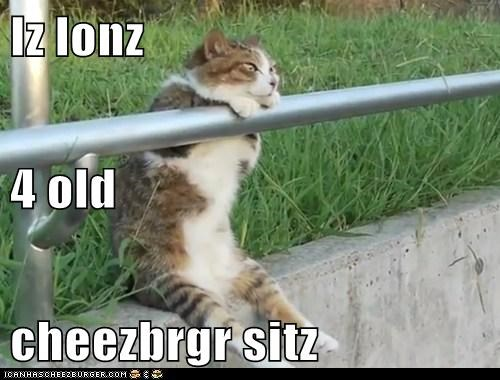 Iz lonz 4 old cheezbrgr sitz