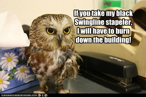 Milton the Office Owl