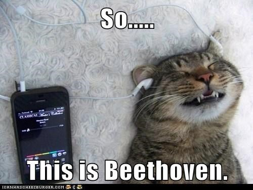 So.....  This is Beethoven.