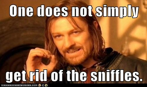 One does not simply  get rid of the sniffles.