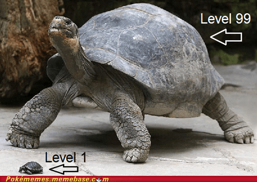 IRL,level up,rare candy,turtles
