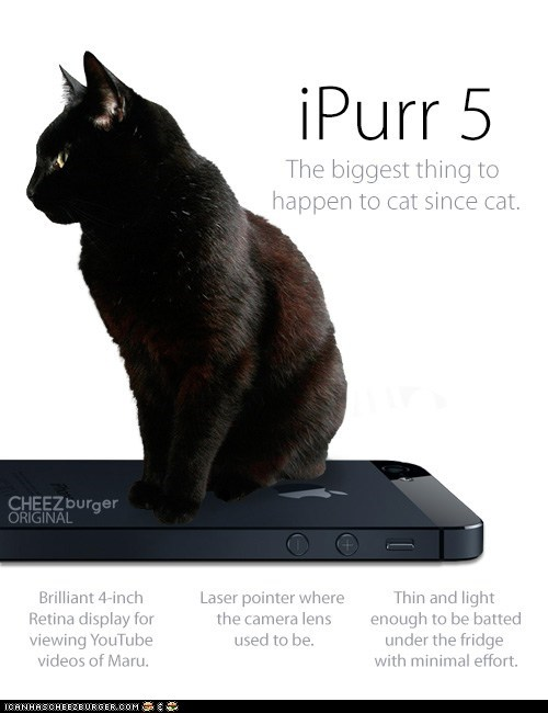 Introducing the iPurr 5