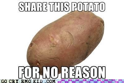 facebook,potato,relevant,share,wtf