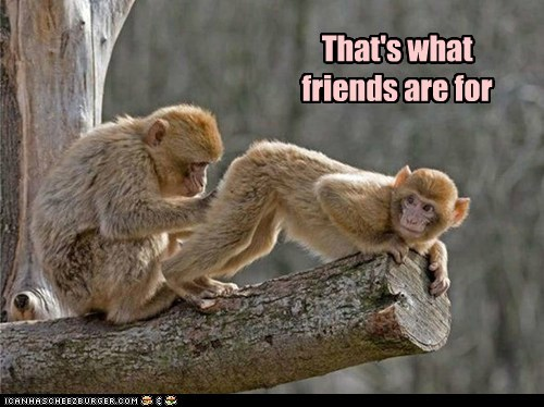 """A True Friend Always Has Your """"Back"""""""