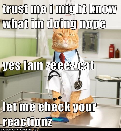 trust me i might know what im doing nope yes iam zeeez cat let me check your reactionz