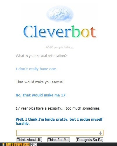 Cleverbot is a Teenage Girl