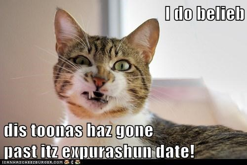 I do belieb  dis toonas haz gone                                                past itz expurashun date!