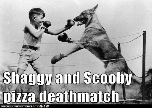 kid,scooby,boxing,dogs,shaggy