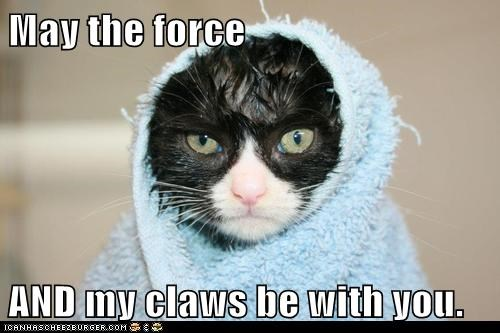 May the force  AND my claws be with you.