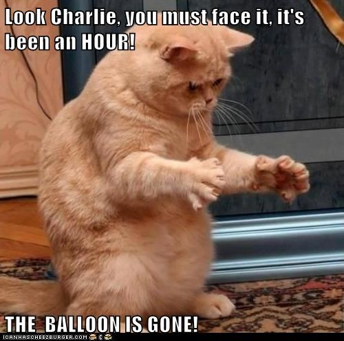 Look Charlie, you must face it, it's been an HOUR!  THE  BALLOON IS GONE!