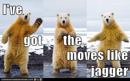 polar bear,moves like jagger,song,maroon 5,dance
