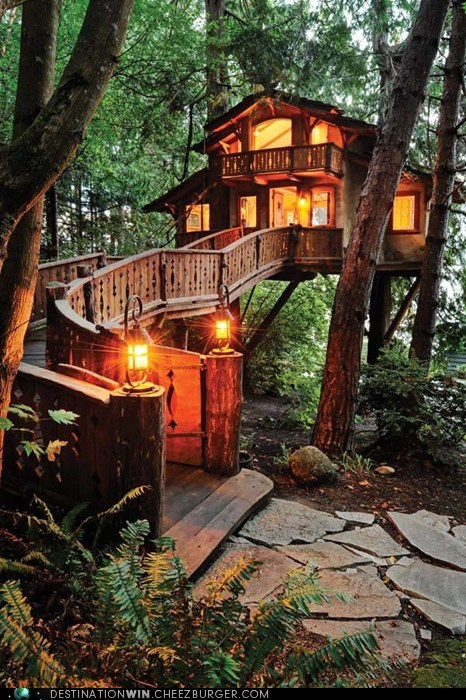 best of week,design,Hall of Fame,home,nature,tree house,vacation home