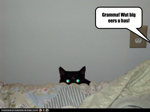 Gramma! Wut big eers u has!