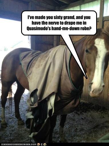 horse,racing,money,quasimodo,hand-me-downs,nerve,unappreciated