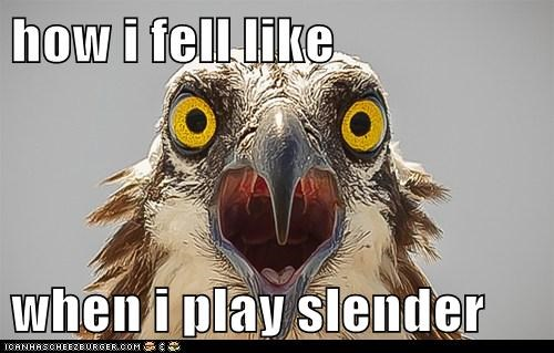how i fell like   when i play slender