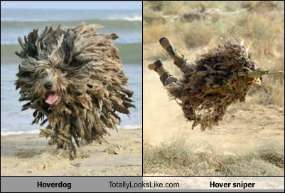 Hoverdog Totally Looks Like Hover Sniper
