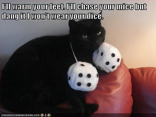 I'll warm your feet. I'll chase your mice but dang it I won't wear your dice.