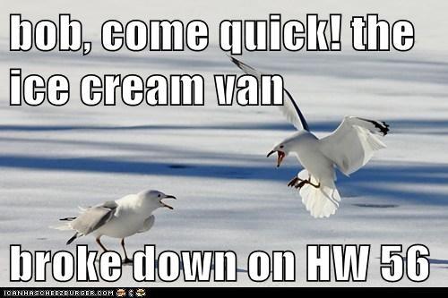 bob, come quick! the ice cream van   broke down on HW 56