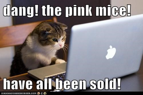 dang! the pink mice!  have all been sold!